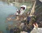 娄星区各乡镇开展河道保洁 助力疫情防控