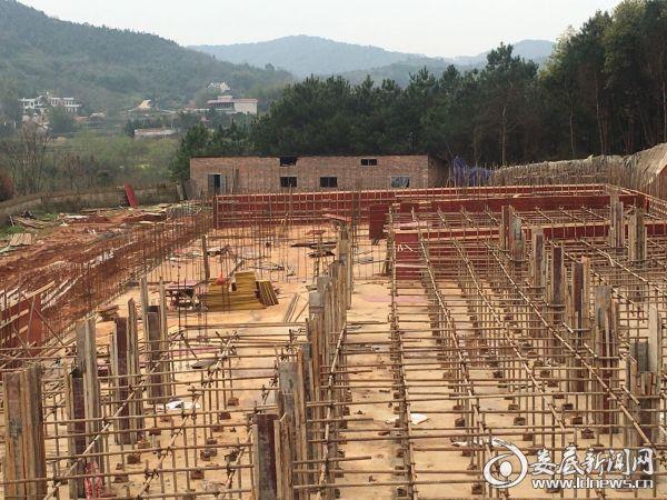 (娄星区蛇形山镇正在新建存栏2000头母猪的养猪场)