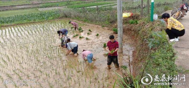 http://www.hunanpp.com/caijingfenxi/136593.html