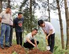新化县开展松材线虫病除治山场质量验收工作