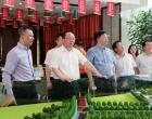 杨懿文赴宁邦中心调研:打造城市新地标 展示娄底新形象