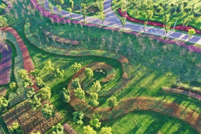 """《【恒达主管】弥勒太平湖森林小镇: 绿化、美化、彩化、香化,荒山变""""金山""""》"""