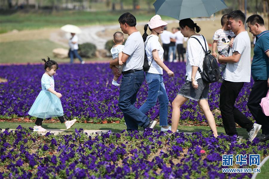 (新华全媒头条·图文互动)(6)大美中国看活力——来自国庆黄金周的一线观察