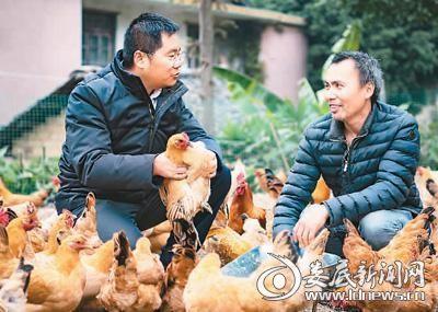 (龚光辉(左)向农户传授养鸡知识)