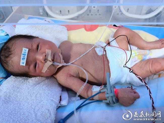 宝宝目前病情较为稳定,不日也将康复出院