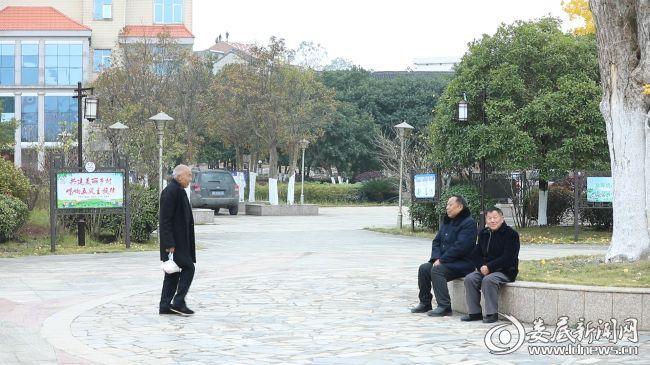 秋湖村老人们正在村里散步唠嗑