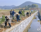 双峰:植树护河添绿意 扶贫建设促发展