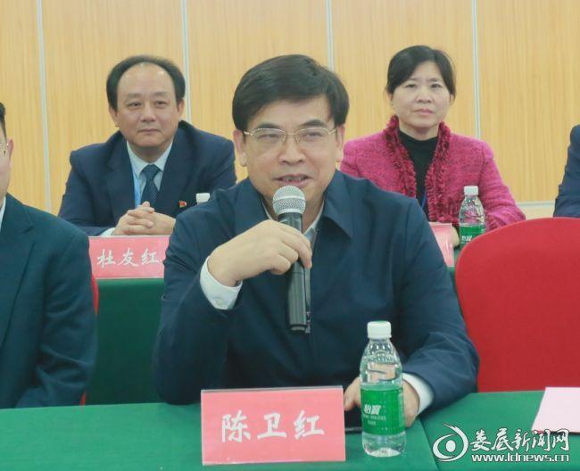 湖南省医院协会会长陈卫红讲话