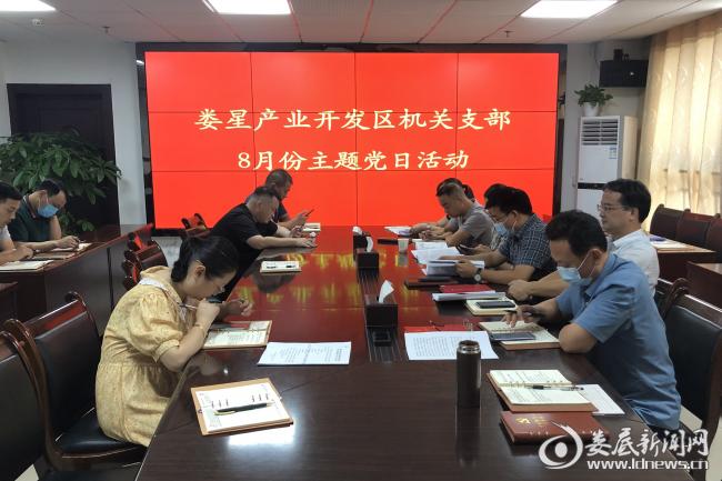 (8月20日上午,娄星产业开发区组织开展8月份主题党日活动)