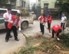 乐坪街道廖家社区开展卫生大扫除活动